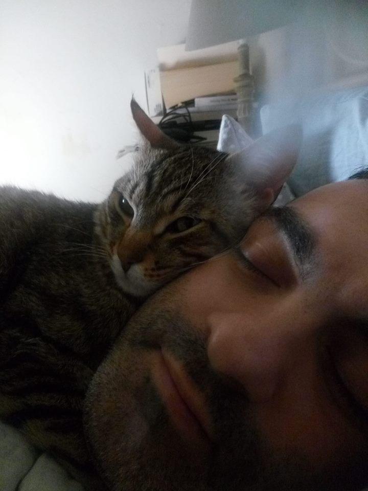 義大利媒體23日報導,皮亞納與妻子因為被自己飼養的兩隻貓咪吵醒,才從土石流逃過一劫。圖為皮亞納與他的貓。(圖取自facebook.com/claudio.piana.7)
