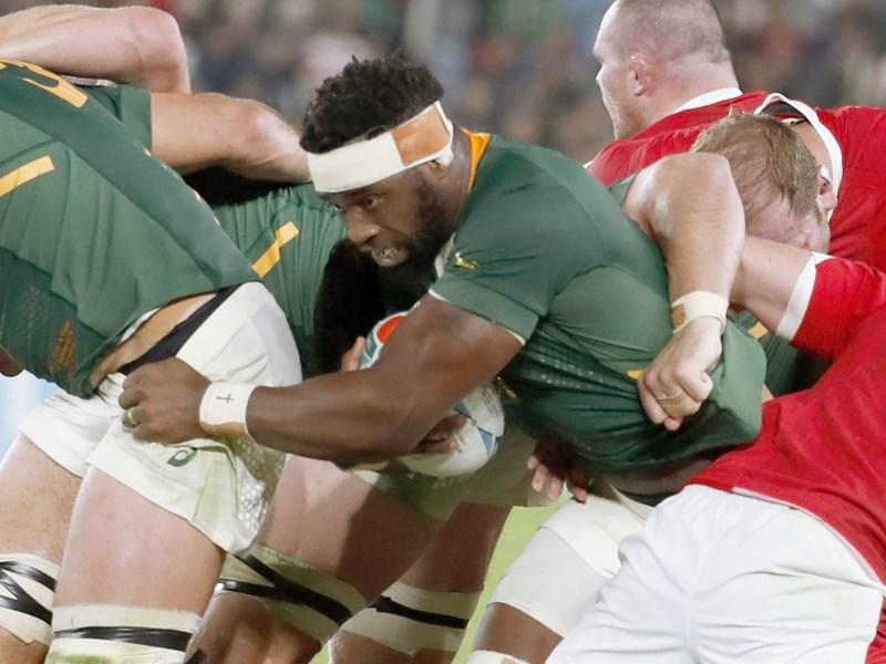 第9屆世界盃橄欖球賽正在日本舉行,南非隊(綠衣)與英格蘭隊2日將爭冠。(共同社提供)