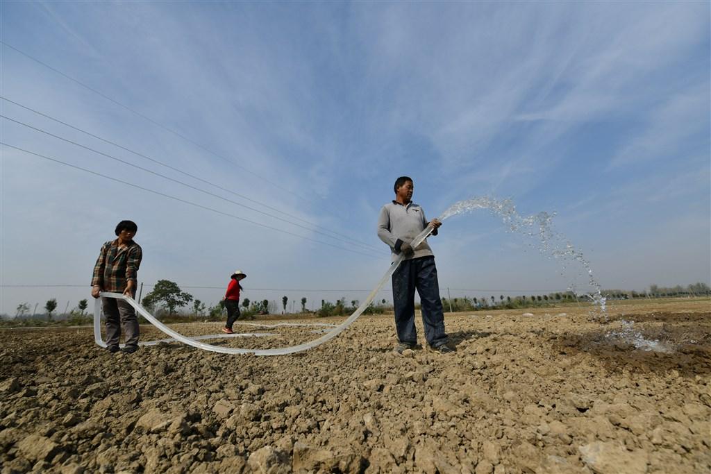 中國長江中下游地區旱情自7月下旬起已持續近5個月,中國財政部宣布撥付人民幣4.18億元(約合新台幣18.07億元)的中央自然災害救災資金,用以救助旱情。圖為安徽省村民在為田地澆水抗旱。(中新社提供)