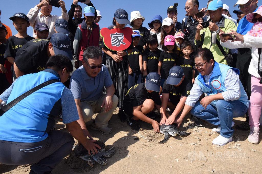 2隻出生體弱的保育類綠蠵龜在水試所海龜收容中心2年的照護下,12日由澎湖縣長賴峰偉(前左2)等人共同野放,見證海龜重返大海。(澎湖縣政府提供)中央社 108年11月12日