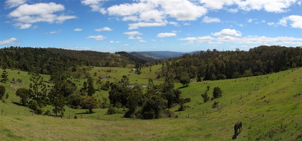 據澳洲學者估算,造訪國家公園對於改善心理健康可產生約台幣183兆元價值。圖為澳洲雷明頓國家公園。(圖取自維基共享資源;作者Donaldytong,CC BY-SA 3.0)