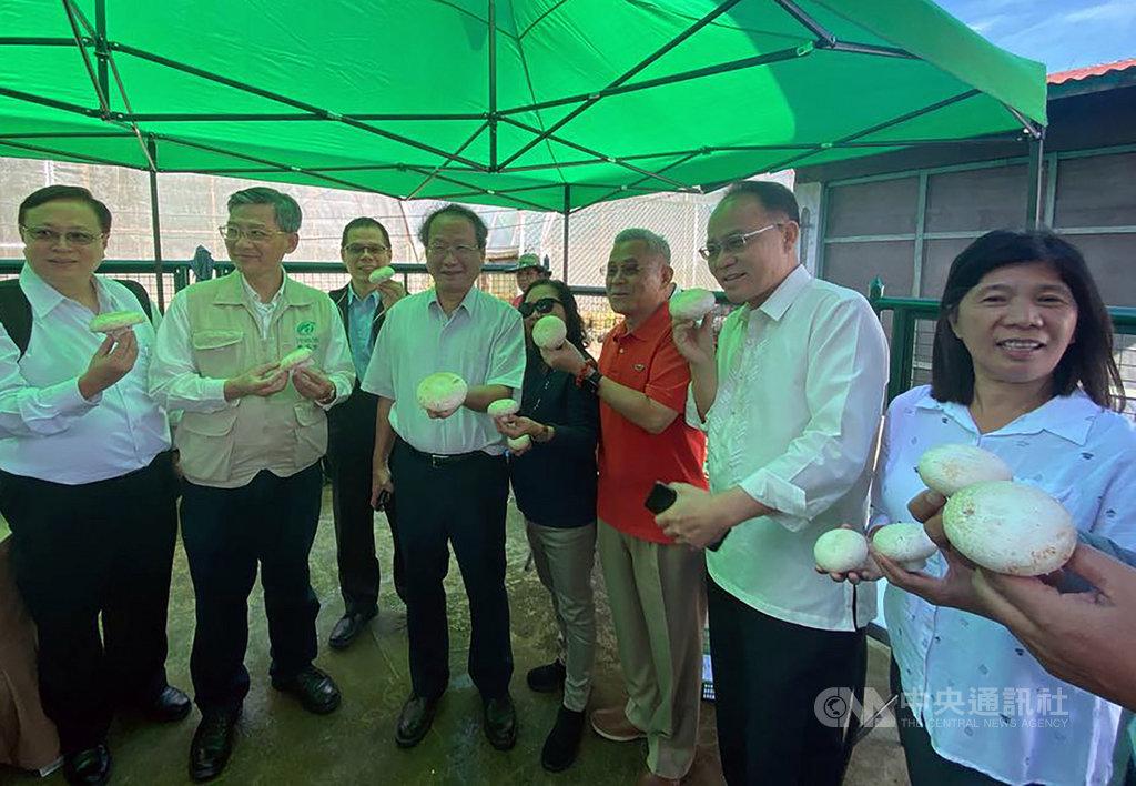 農委會副主委黃金城(左4)19日與駐菲代表徐佩勇(右3)一起考察菲律賓碧瑤市的台菲洋菇示範農場。在台灣技術支援下,菲國農民種出的洋菇比拳頭還大,讓他們非常開心。(駐菲代表處提供)中央社記者陳妍君傳真 108年11月19日