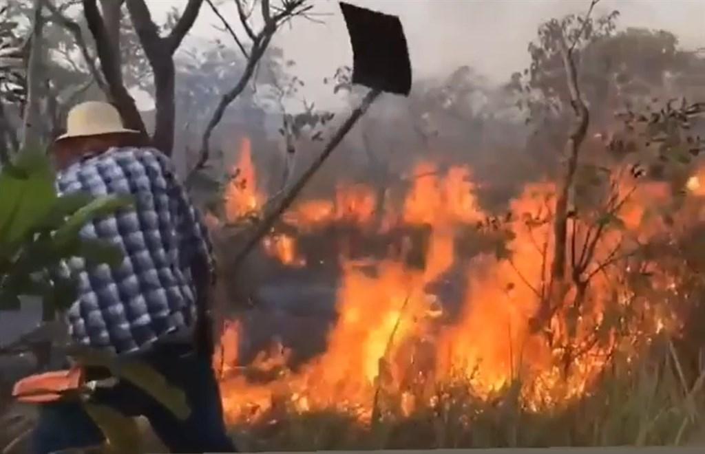 巴西刑警26日拘捕Alter do Chao社區消防隊4名志工消防員,指控他們在亞馬遜雨林故意製造火災,以獲取國際金援,引起當地社運人士、原住民和環保團體抗議。圖為NGO組織9月前往森林滅火。(圖取自Brigada De Alter臉書facebook.com)