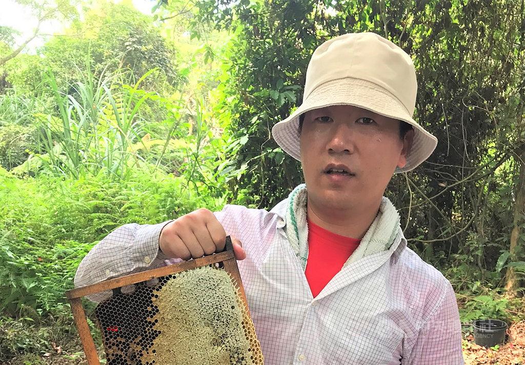 原本在科技業擔任研發工程師的陳冠樺(圖),因不捨母親獨自一人管理蜜蜂養殖事業,毅然決然放下百萬年薪,與母親一同接手由祖父傳承下來的養蜂事業。(新北市農業局提供)中央社記者王鴻國傳真 108年12月9日