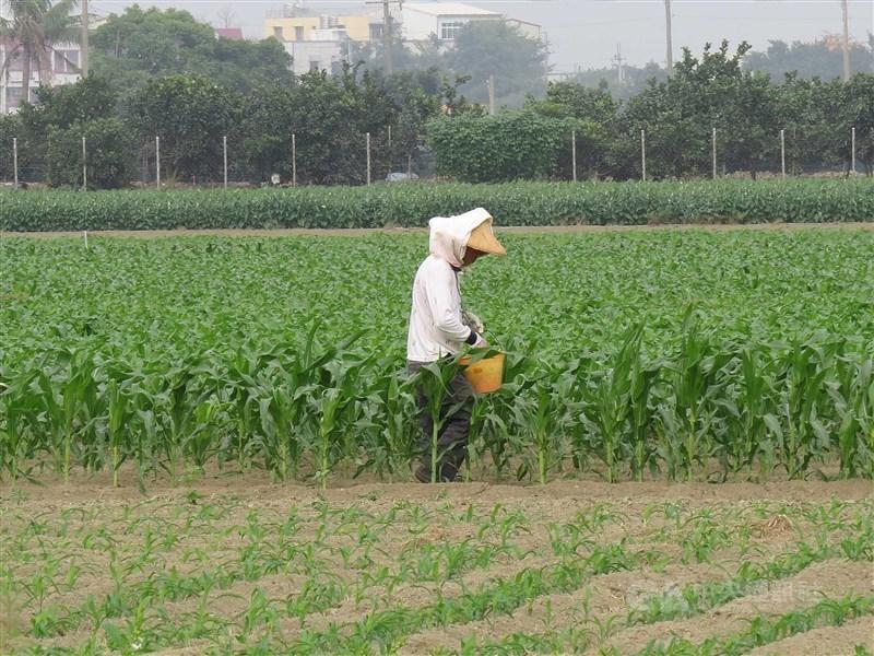 立法院社會福利及衛生環境委員會原訂11日排審老農津貼暫行條例修法,但議程突取消。(中央社檔案照片)