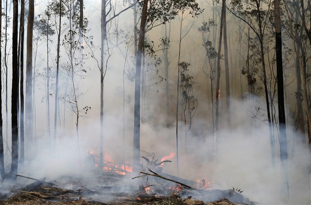 野火肆虐,澳洲旅遊出口委員會17日預測,澳洲2020年將損失45億澳元(約新台幣930億元)的觀光收入。圖為12日澳洲波達拉野火情形。(美聯社)