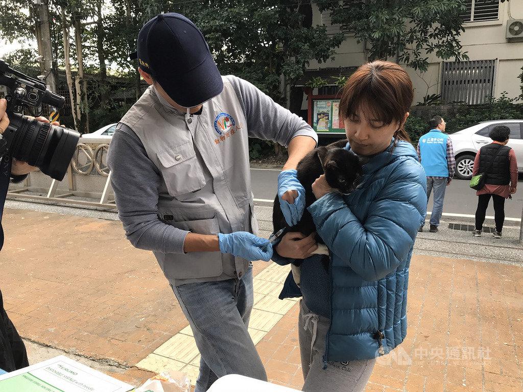 花蓮市民宅日前發現的白鼻心確診感染狂犬病,花蓮縣政府22日到白鼻心現蹤社區免費施打疫苗。中央社記者張祈攝 109年1月22日