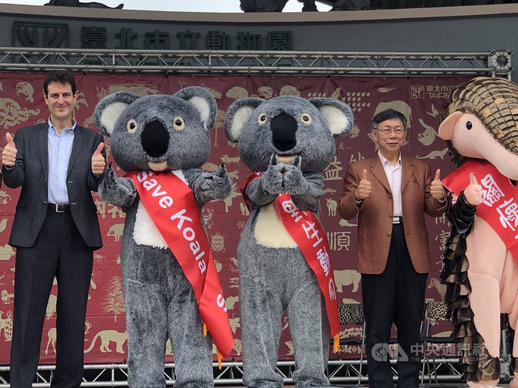 台北巿長柯文哲(右)與澳洲辦事處代表高戈銳(左)25日到動物園出席無尾熊活動發送紅包,柯文哲表示,澳洲發生森林大火,到現在還沒完全解決,做為友邦國家,必須表達關心並捐款,也呼籲民眾做環保。中央社記者劉世怡攝 109年1月25日