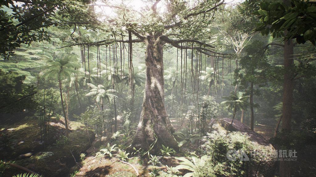 宏達電與中華電信攜手合作,在台中燈會可免費體驗VR作品Tree,只要戴上VIVE Cosmos,就能讓使用者搖身一變為熱帶雨林中的一棵樹。(宏達電提供)中央社記者江明晏傳真 109年2月7日