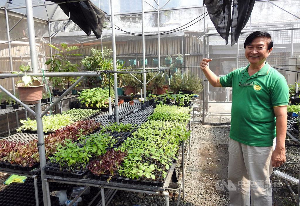 HARBEST AgriBusiness公司創辦人洪宗介是台灣女婿,也是在菲律賓推廣台灣農業技術重要推手。圖為洪宗介介紹公司溫室裡種植的蔬果,攝於1月27日。中央社記者陳妍君馬尼拉攝 109年2月9日