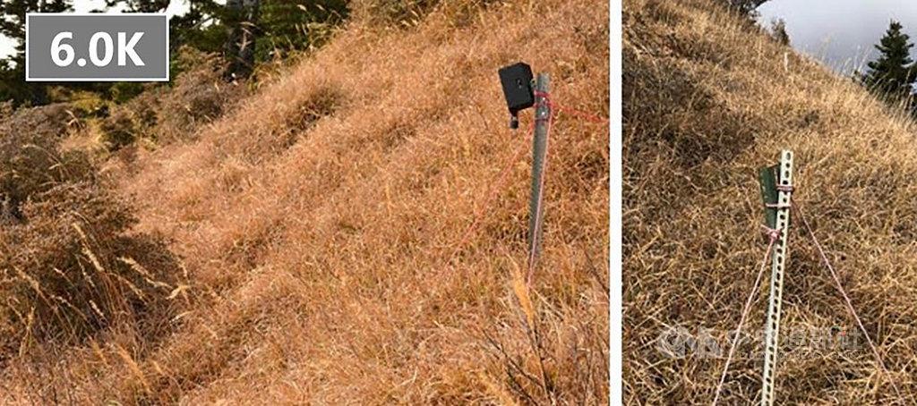 雪霸國家公園管理處副處長鄭瑞昌15日表示,為監測高山杜鵑生長情形,中興大學團隊在雪霸國家公園雪東線海拔3100公尺處架設2部自動相機,近期突然不見蹤影,設於6公里處的相機僅剩鐵架(右),盼山友協尋。(雪霸國家公園管理處提供)中央社記者管瑞平傳真 109年2月15日