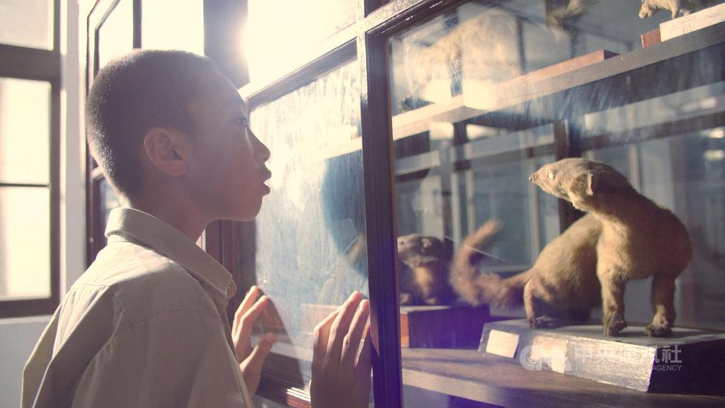 奇美博物館21日公布最新形象影片「心願的起源」,詳述奇美集團創辦人許文龍在困苦童年歲月許下興建博物館願望的心路歷程,帶領民眾一起重溫博物館成立的初心。(奇美博物館提供)中央社記者張榮祥台南傳真 109年2月21日