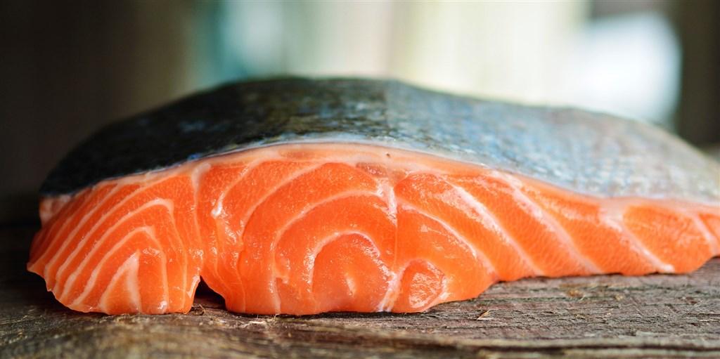 科學家27日發表研究指出,有一種已存活5.5億年的寄生蟲不用呼吸即可維繫生命,牠們寄生鮭魚,只吃現成養分就能活。(示意圖/圖取自Pixabay圖庫)