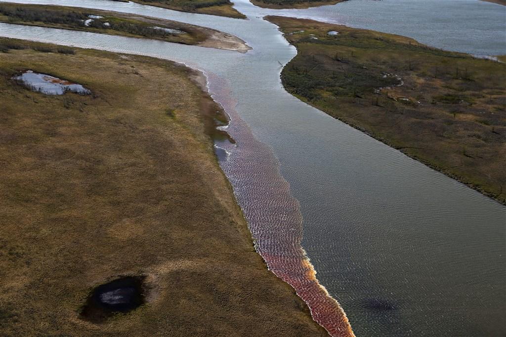 俄羅斯官員8日表示,即使當局設置浮動水壩來圍堵油汙,仍在西伯利亞地區一條河流發現到高濃度汙染。圖為6日諾里爾斯克一處河流遭柴油汙染情形。(法新社提供)