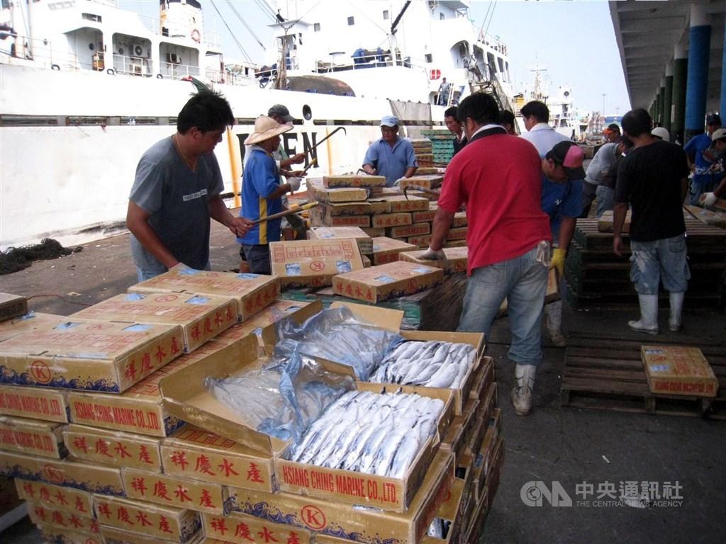 ECFA早收清單上路後,至今為產業界省下逾新台幣2000億元的關稅,但也有不少學者憂心,台灣經濟過度仰賴中國有風險。圖為早收清單內的秋刀魚外銷中國。中央社記者王淑芬攝 99年7月18日
