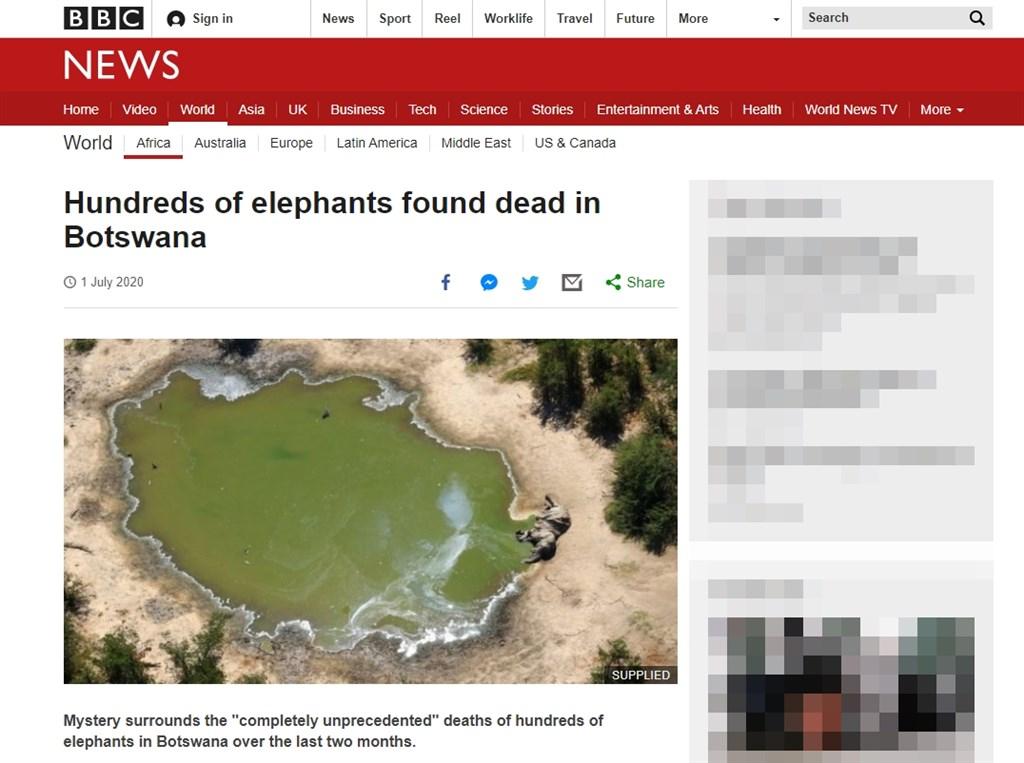 非洲國家波札那5月以來發現超過350隻大象屍體,目前尚未確定死因為何,採檢結果還需數週才會出爐。專家表示,這不僅是保育災難,也可能引發公共衛生危機。(圖取自英國廣播公司網頁bbc.com/news)