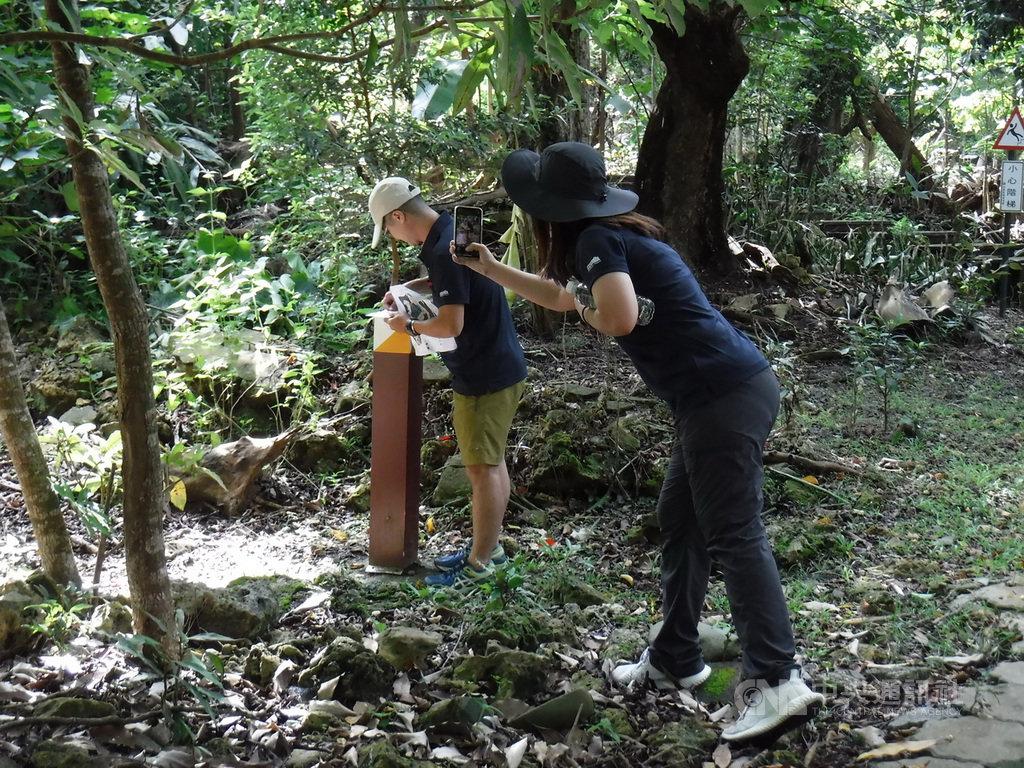 林務局7日在墾丁舉辦全國森林護衛隊體技能競賽,全台各縣市林區管理處100多名森林護管員參加,挑戰「越野體能競賽」、「定向運動」及「木材辨識」。(屏東林管處提供)中央社記者郭芷瑄傳真 109年7月7日