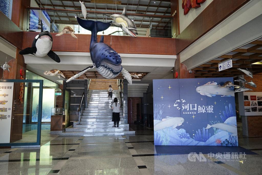 「河口鯨靈–馬祖鯨豚特展」11日登場,吸引許多親子朋友參與開幕活動,一起學習鯨豚知識。中央社記者邱筠攝 109年7月11日