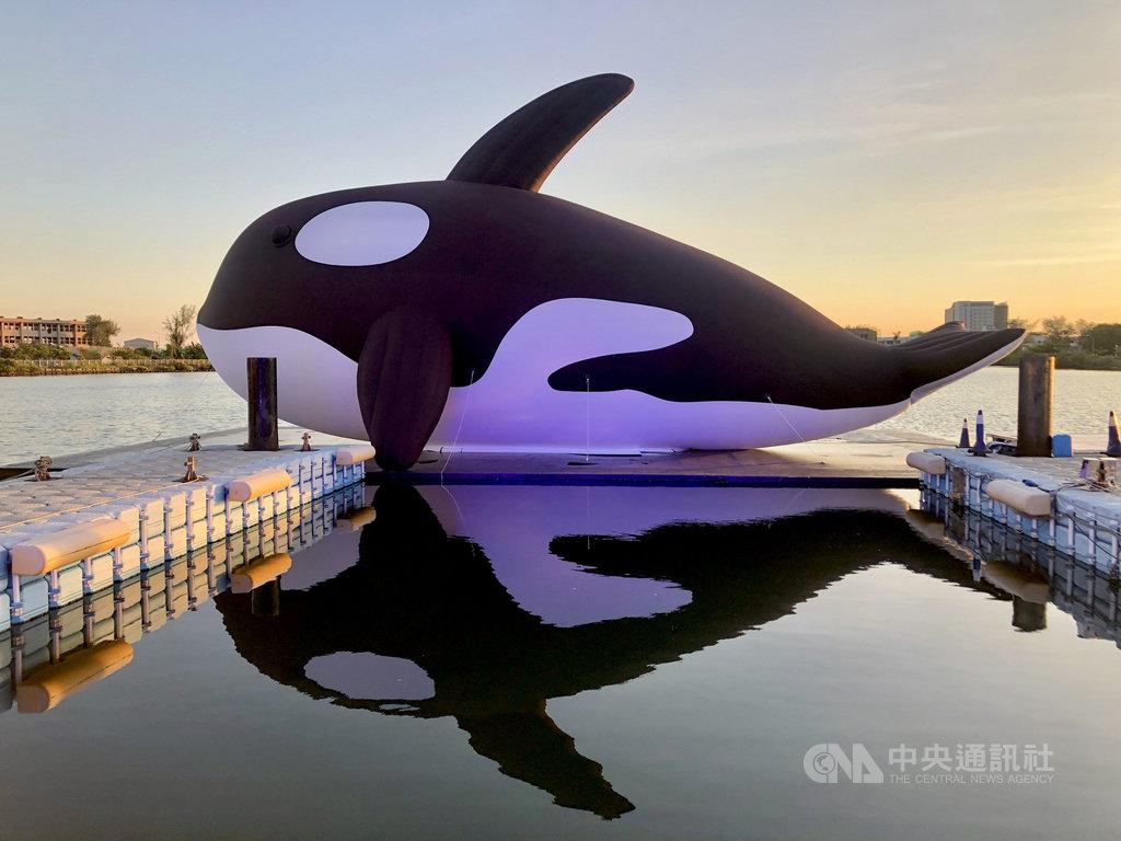 號稱全球最大虎鯨裝置藝術的「安平虎鯨Orca」15日在台南安平水景公園亮相,並將舉辦夏日嘉年華活動。(KKDAY提供)中央社記者余曉涵傳真 109年7月15日