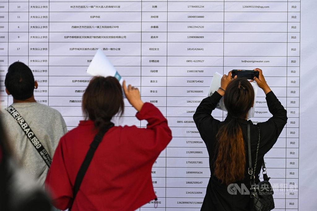 陸媒報導,中國大陸多所大學為了美化畢業生就業數據,造假歪風盛行,與現實找工作難度大增差距甚遠。圖為6月12日,多名大學應屆畢業生在西藏一場官辦招聘會查找求職訊息。(中新社提供)中央社 109年7月15日
