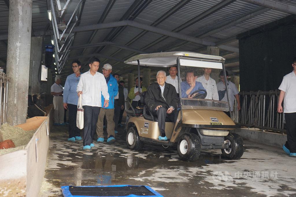 前總統李登輝30日晚間辭世,享耆壽98歲。他在花蓮留下培育台灣和牛遺願,可惜未能等到成果上市。圖為107年4月12日李登輝(車上左)到訪兆豐農場關心「源興牛」培育狀況。中央社記者張祈攝  109年7月31日