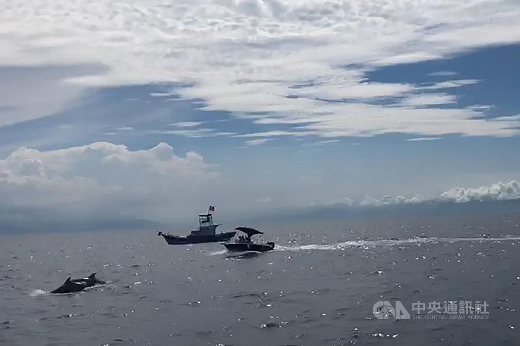 宜蘭龜山島附近海域7日下午有一艘小艇突然加速從周邊賞鯨船旁疾駛而過,使鯨豚群受到驚嚇而下潛,引起賞鯨民眾反感。宜蘭縣府對此表示,鯨豚屬保育類動物,小艇若是蓄意騷擾,就涉及違反野生動物保育法。(翻攝畫面)中央社記者沈如峰宜蘭縣傳真 109年8月7日