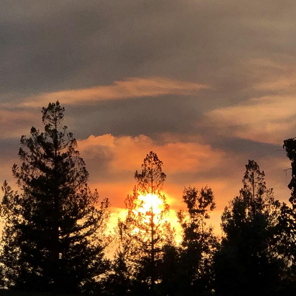 美國加州25日天氣轉涼,有助消防人員對抗州內多達650處的野火。圖為舊金山灣區21日因異常閃電引發的野火。(中央社檔案照片)