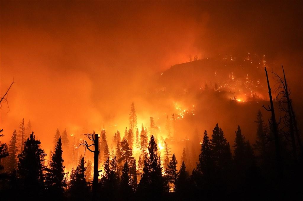 加州野火「小溪大火」4日晚間開始迅速燃,席耶拉國家森林也被大火吞噬。(美聯社)