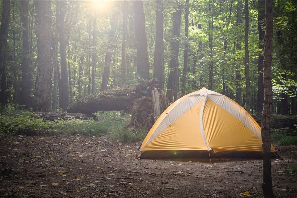中華民國露營休閒車協會理事長郭冠雄說,野營風險大,旅客很難知道河床等地形是否安全外,也有遭遇毒蛇、虎頭蜂等機率。(示意圖/圖取自Unsplash圖庫)