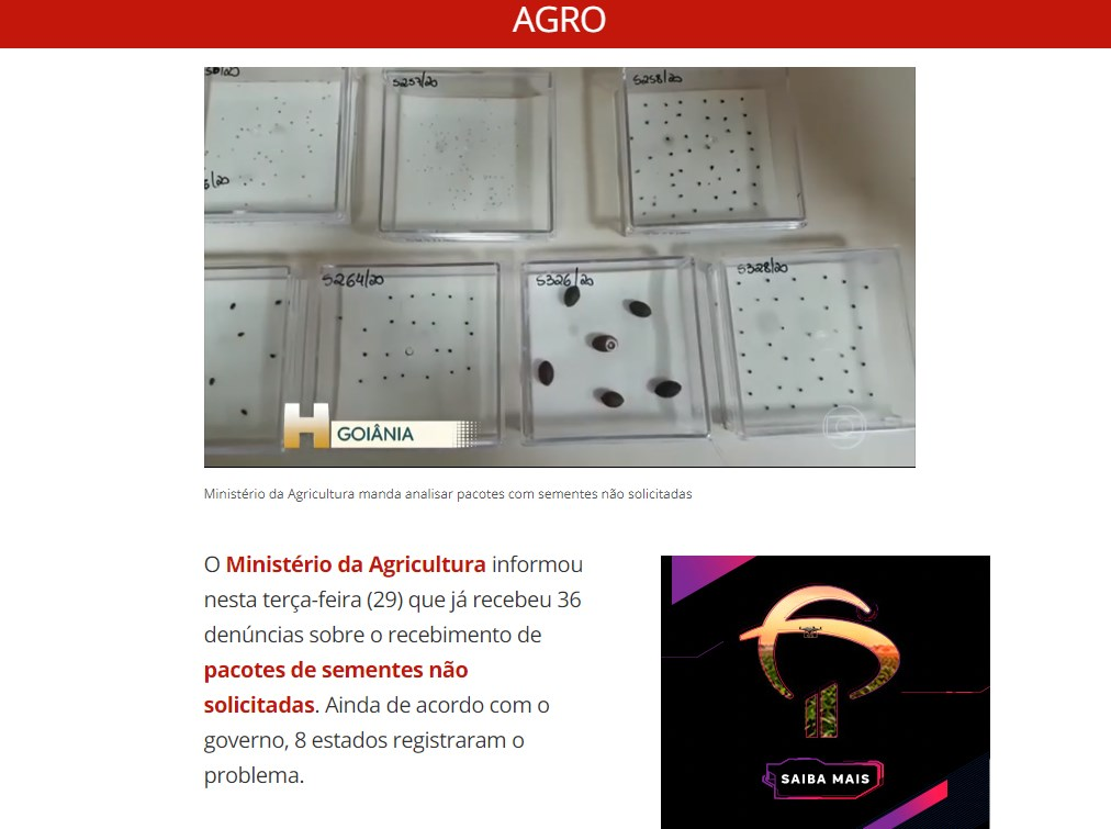 巴西農業部29日指出,接獲8州36起民眾收到從國外寄來、未經訂購的不明種子郵包的投訴案例,已展開調查。(圖取自巴西新聞G1網頁g1.globo.com)