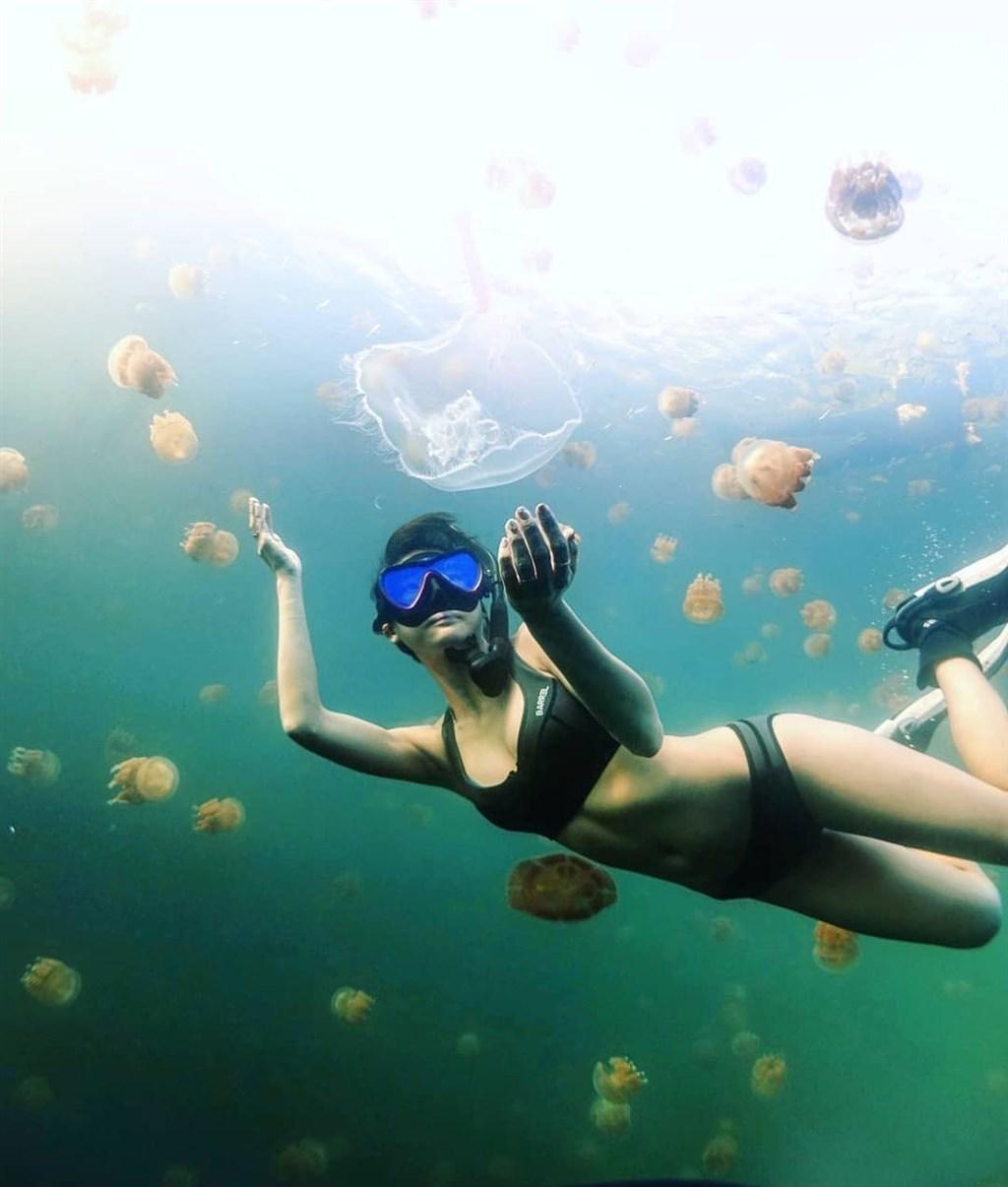 觀光局擬推旅遊泡泡,帛琉可望納首波開放國家。圖為帛琉旅客浮潛。(圖取自facebook.com/pristineparadisepalau)