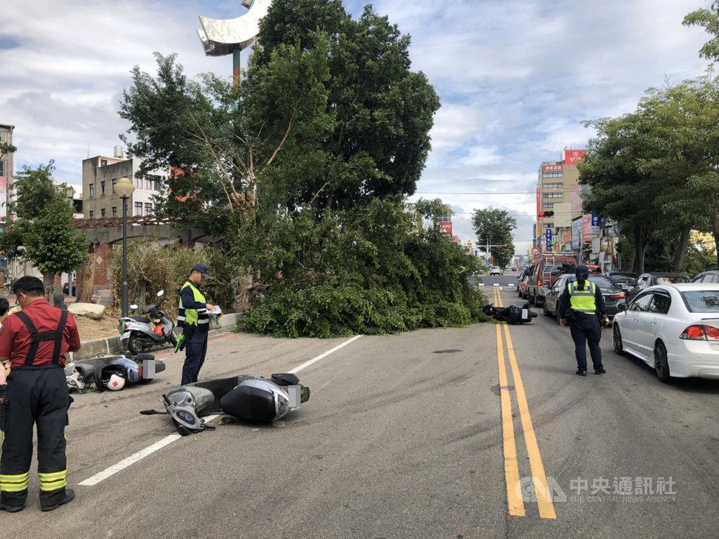 苗栗縣頭份市自強路與中華路口公園路樹17日上午突然有大片樹枝斷裂傾倒,造成行經路段多部機車閃避不及,至少4、5名機車騎士遭壓傷。(警方提供)中央社記者魯鋼駿傳真 109年10月17日