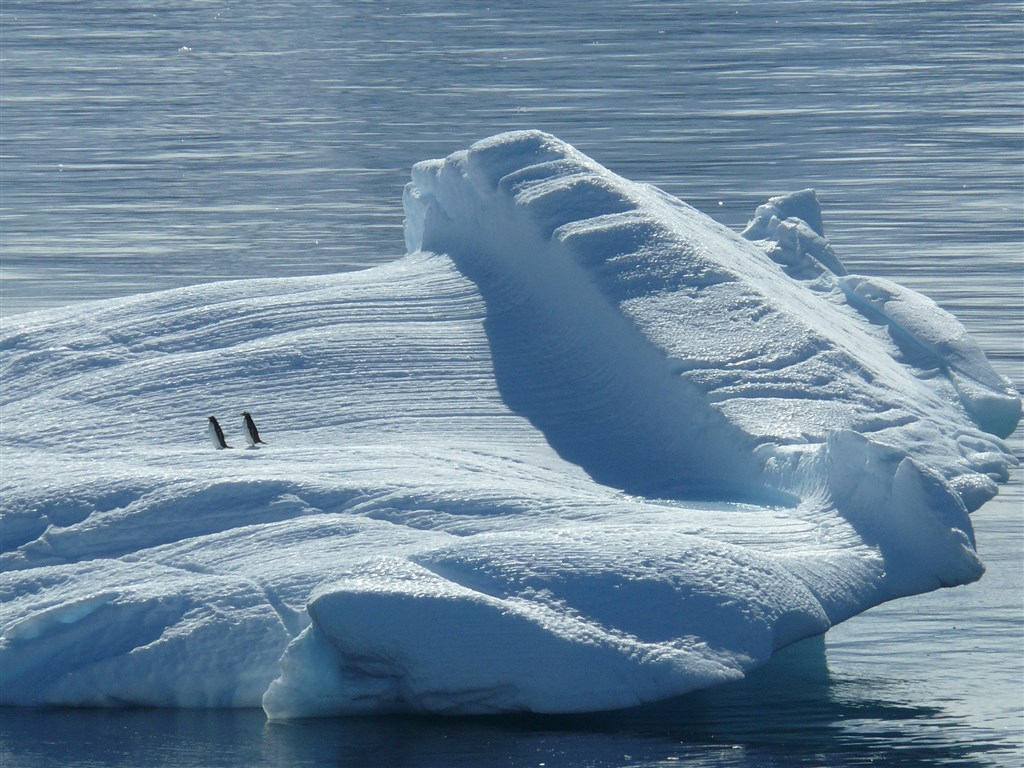 280多位科學家和保育專家19日敦促保護南極洲,他們說,氣候變遷和人類活動正在傷害這個冰封大陸。(圖取自Pixabay圖庫)