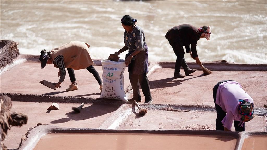 多位美國參議員22日提出決議案,敦促美國企業迴避涉及西藏強迫勞役的供應商,並就中國強迫勞役作為展開調查。圖為藏人在鹽田中勞動。(中新社)
