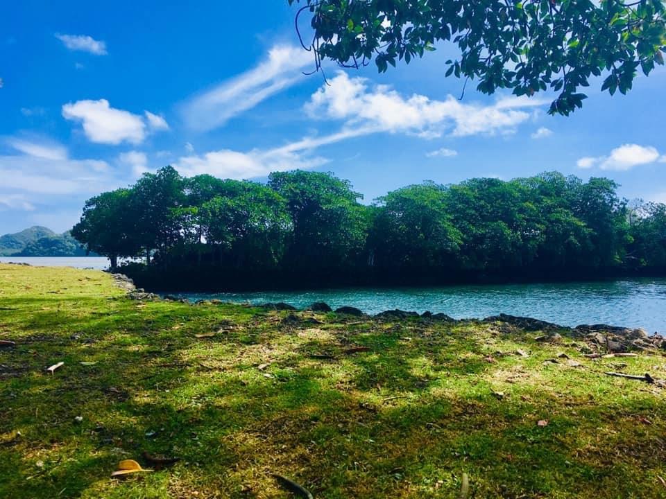 指揮中心發言人莊人祥24日表示,帛琉考量檢驗量能且北半球將入冬,暫不鬆綁邊境檢疫規定,帛琉旅遊泡泡確定暫緩。圖為帛琉一景。(圖取自facebook.com/officialpva)