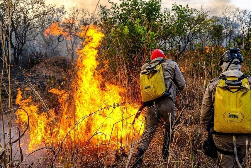 巴西國家太空署(INPE)最新數據指出,10月中西部大沼澤再次創下自1998年太空署開始監測以來,當月起火點數目最多紀錄。圖為8月巴西消防人員正撲滅大火。(圖取自facebook.com/bombeirosm)