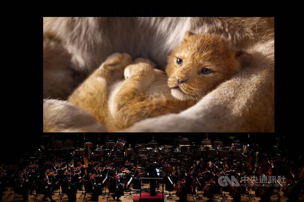 「獅子王電影交響音樂會」12月5日將在台中國家歌劇院登場,之後也將在高雄衛武營及台北國家音樂廳演出。(牛耳藝術提供)中央社記者趙靜瑜傳真  109年11月25日