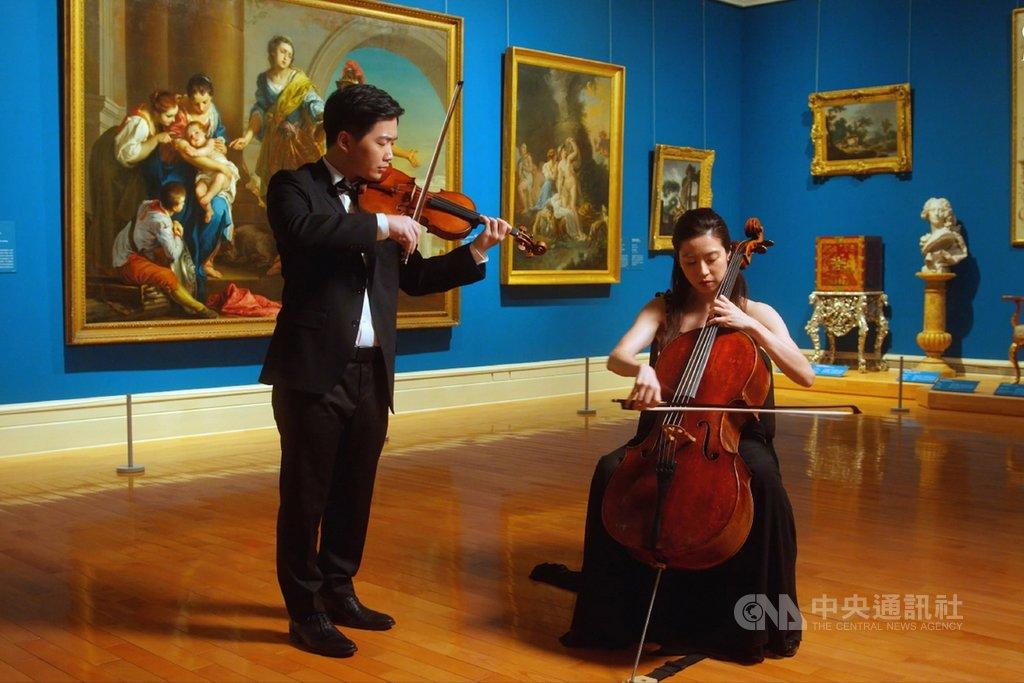 世界提琴日國際交流 奇美博物館推線上琴音饗宴
