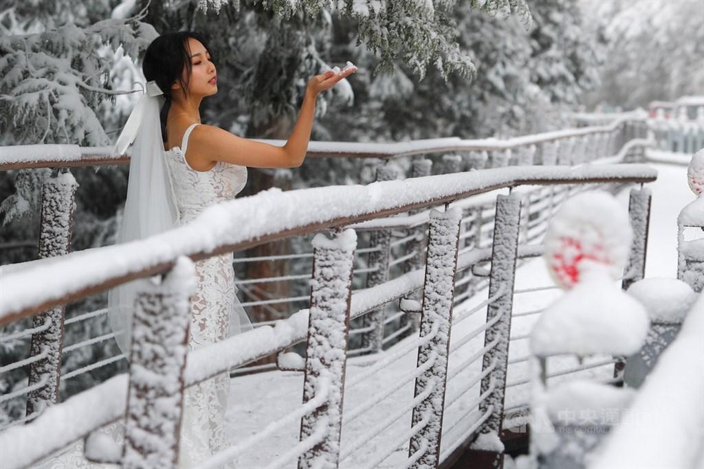 寒流發威,太平山國家森林遊樂區8日下雪,有遊客特地上山取景外拍,捕捉難得一見的銀白美景。中央社記者王騰毅攝 110年1月8日