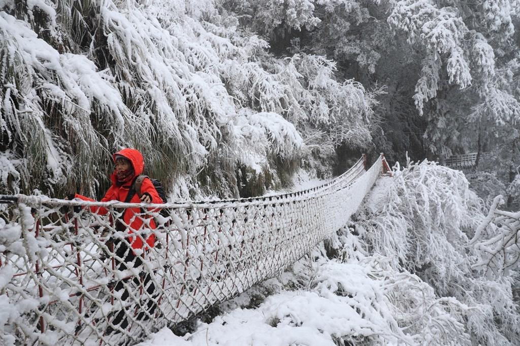 海拔約1900公尺的宜蘭太平山國家森林遊樂區7日晚間飄下雪花,8日山間積雪,遊客走訪知名的見晴懷古步道,視線所及都成銀白世界。中央社記者吳家昇攝 110年1月8日