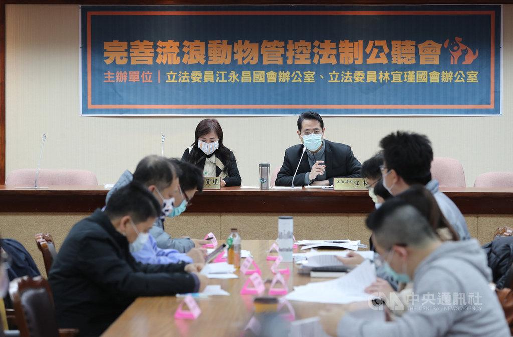 民進黨立委江永昌(後右)、林宜瑾(後左)12日在立法院舉辦「完善流浪動物管控法制」公聽會,邀請專家學者與民間團體與會討論。中央社記者張皓安攝  110年1月12日