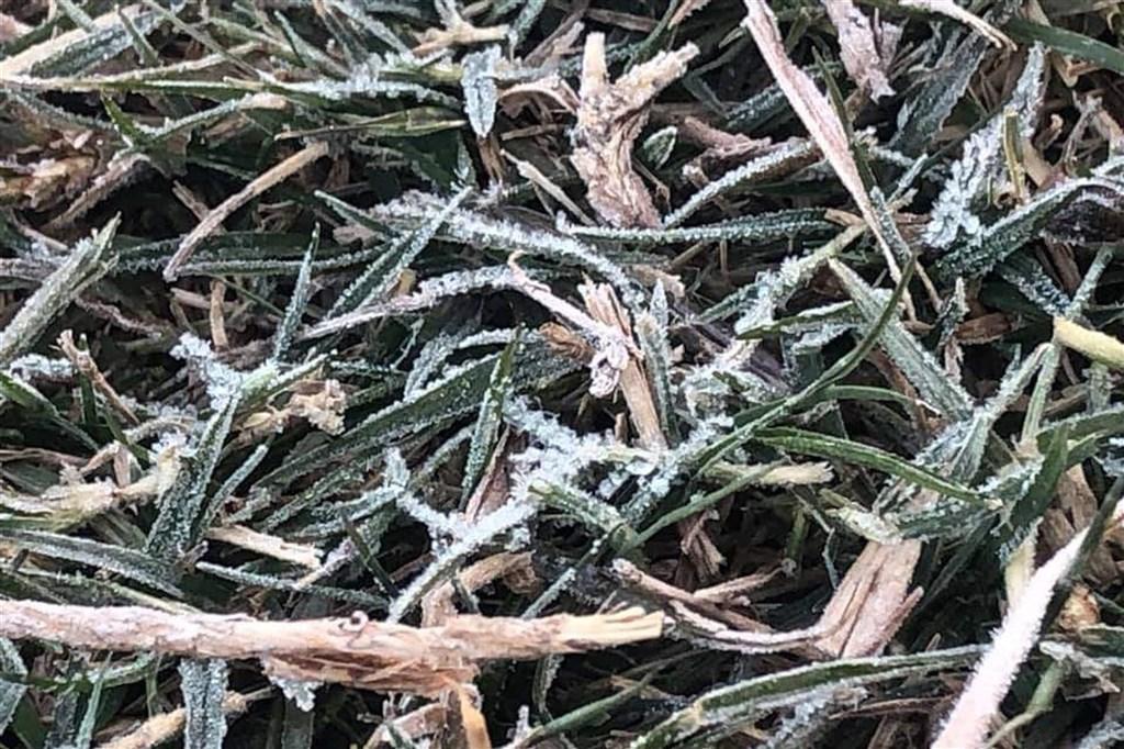 金門氣象站表示,受到寒流與輻射冷卻影響,金門13日清晨最低溫只有攝氏3.9度。多數地區出現結霜現象。(金門氣象站提供)中央社 110年1月13日