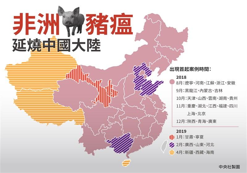 截至4月19日止,中國31個省市均已傳出非洲豬瘟疫情。(中央社製圖)