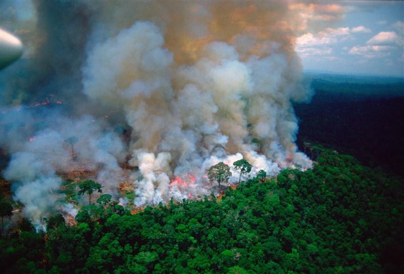 智利總統皮涅拉和法國總統馬克宏26日宣布,G7領袖同意提供2000萬歐元出動消防飛機,撲滅肆虐亞馬遜雨林的巨大森林野火。(圖取自twitter.com/EmmanuelMacron)