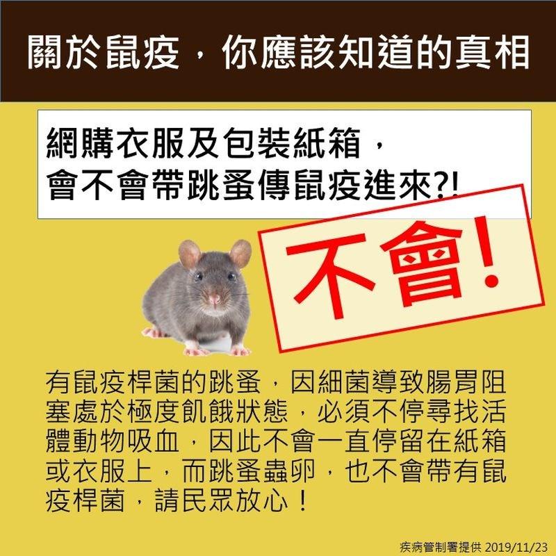 衛生福利部疾病管制署23日發文指出,感染鼠疫的跳蚤不會附著在物體上,蚤類的蟲卵也不會帶有鼠疫桿菌。(疾管署提供)