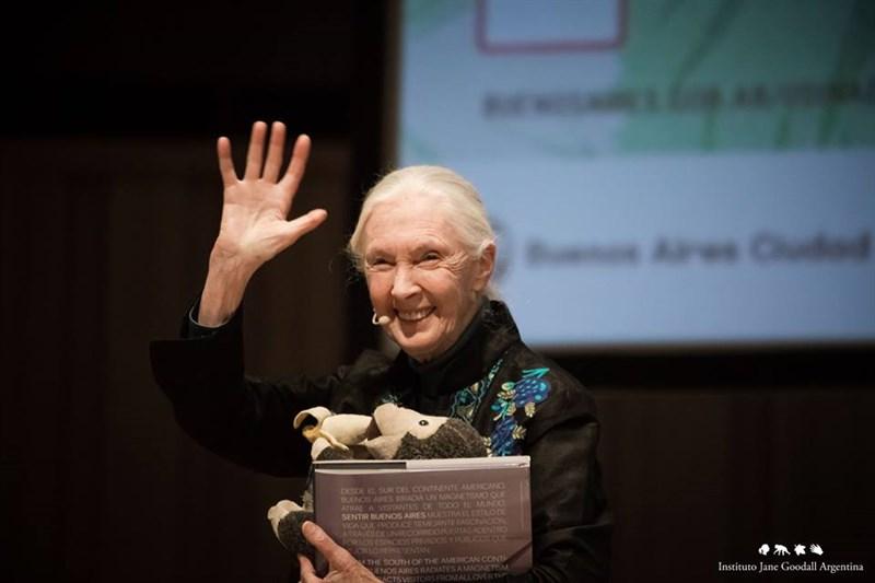 2020年唐獎永續發展獎由國際知名的靈長類動物學家珍古德獲獎。(圖取自facebook.com/janegoodall)