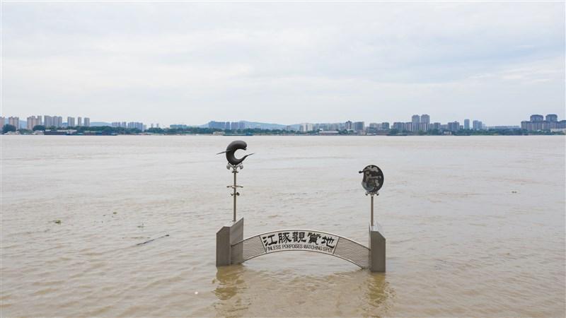 中國6月以來持續暴雨,多地水患,而新一波暴雨又將到來。圖為12日長江南京下關段水位高漲。(中新社提供)