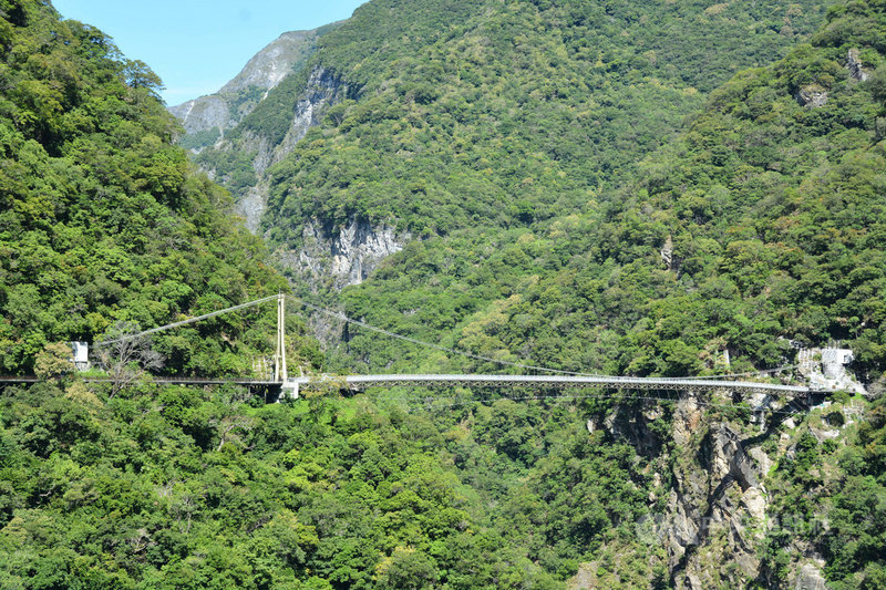 太魯閣國家公園管理處斥資新台幣上億元重建的山月吊橋,將於8月12日下午試營運,8月7日可在太管處官網預約,試營運期間免費開放。中央社記者張祈攝 109年7月29日