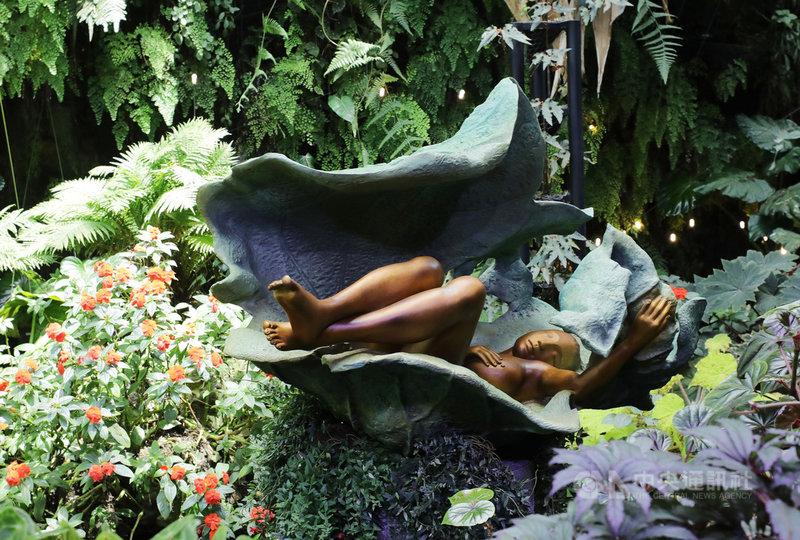 台灣雕塑家李光裕銅雕作品首度赴新加坡濱海灣花園雲霧林展出,16件銅雕藝術與雲霧林內的天然景觀融為一體,圖為李光裕的作品「無逝歲月」。中央社記者黃自強新加坡攝 109年8月13日