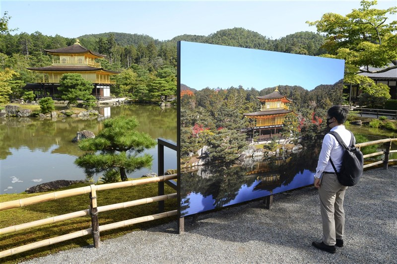 日本京都市知名觀光景點金閣寺,由於屋頂檜皮持續老舊,寺方決定利用疫情期間進行整修。(共同社)